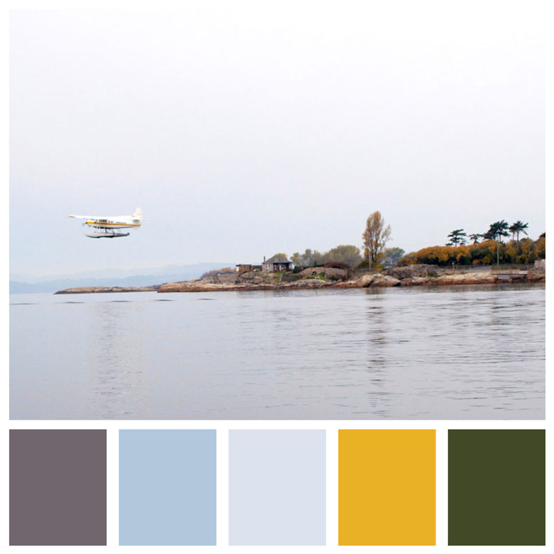 Color Palette: Moody, Ocean, Natural, Misty, Neutral, Grey, Cool, Beach & Winter | Whale Watching in Victoria, British Columbia | Earthtones Travel + Design Blog | Roo Bea Design Co.