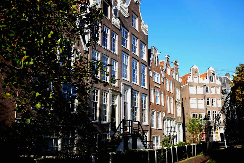 Things to do in Amsterdam | Earthtones Travel + Design Blog | Roo Bea Design Co