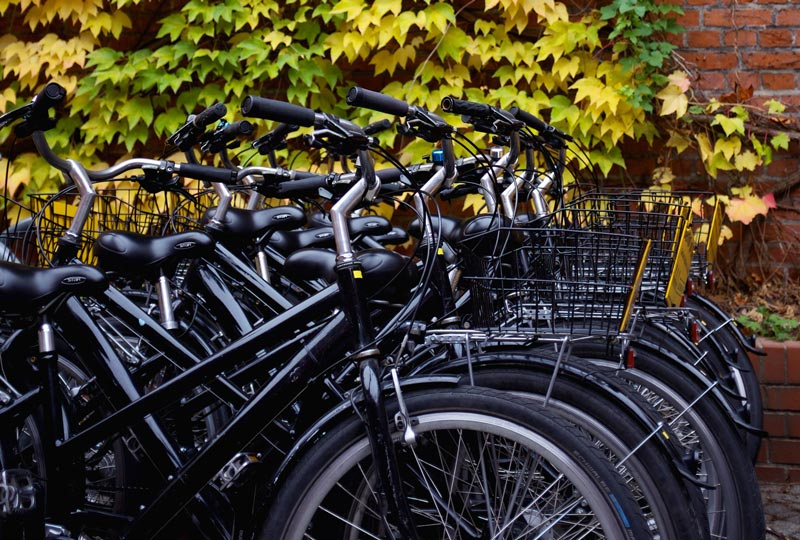 Best Bicycling Cities in Europe | Earthtones Travel + Design Blog | Roo Bea Design Co.