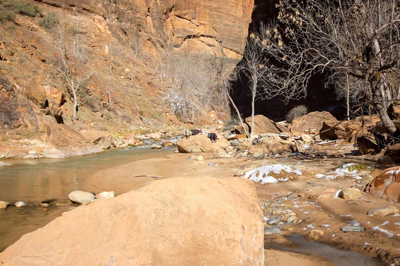 Things to do at Zion National Park   Earthtones Travel + Design Blog   Roo Bea Design Co.