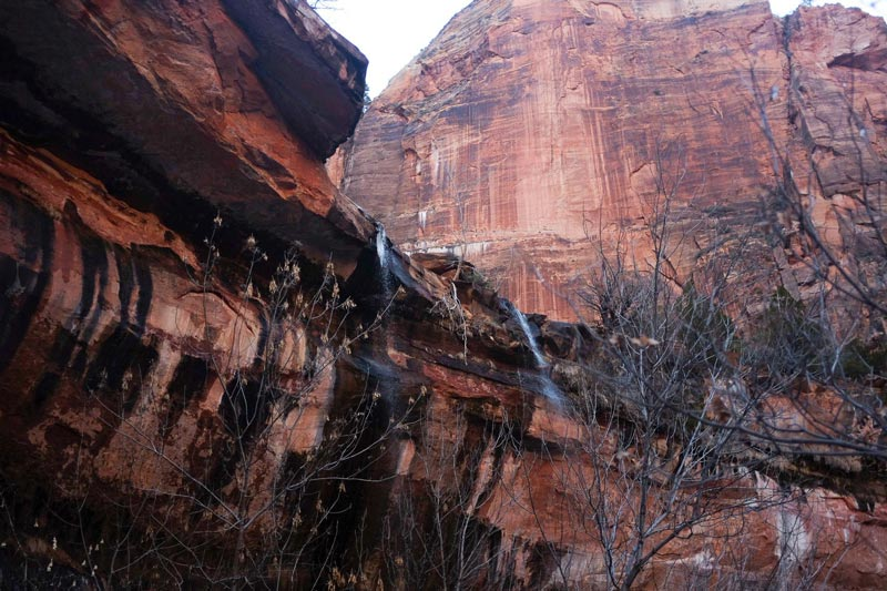 Hike the Emerald Pools at Zion National Park   Earthtones Travel + Design Blog   Roo Bea Design Co.