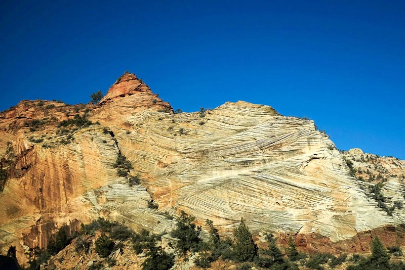 Zion National Park Scenic Drive | Earthtones Travel + Design Blog | Roo Bea Design Co.