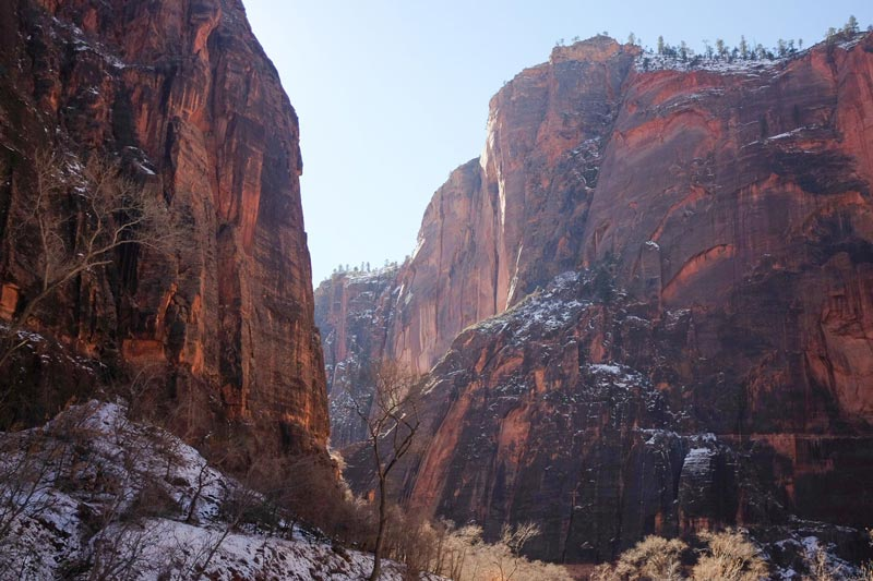 Visiting Zion National Park in the Winter | Earthtones Travel + Design Blog | Roo Bea Design Co.