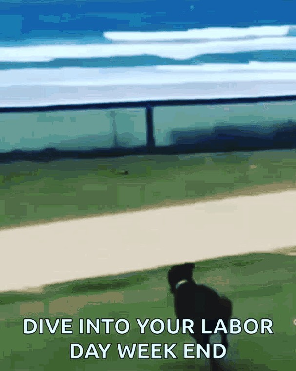 Happy Labor Day Weekend!  #laborday #labordayweekend #funnydogs #funnydogvideo
