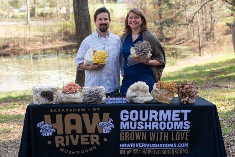 haw river mushrooms.jpg