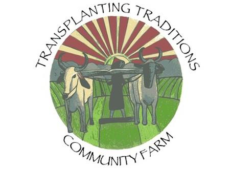transplanting traditions.jpg