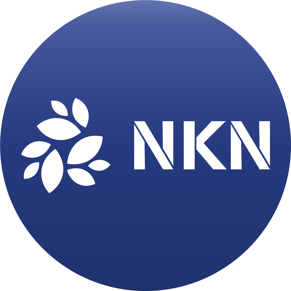 NKN - New Kind of Network (ticker: NKN) is a project aiming to implement blockchain in network connectivity and…