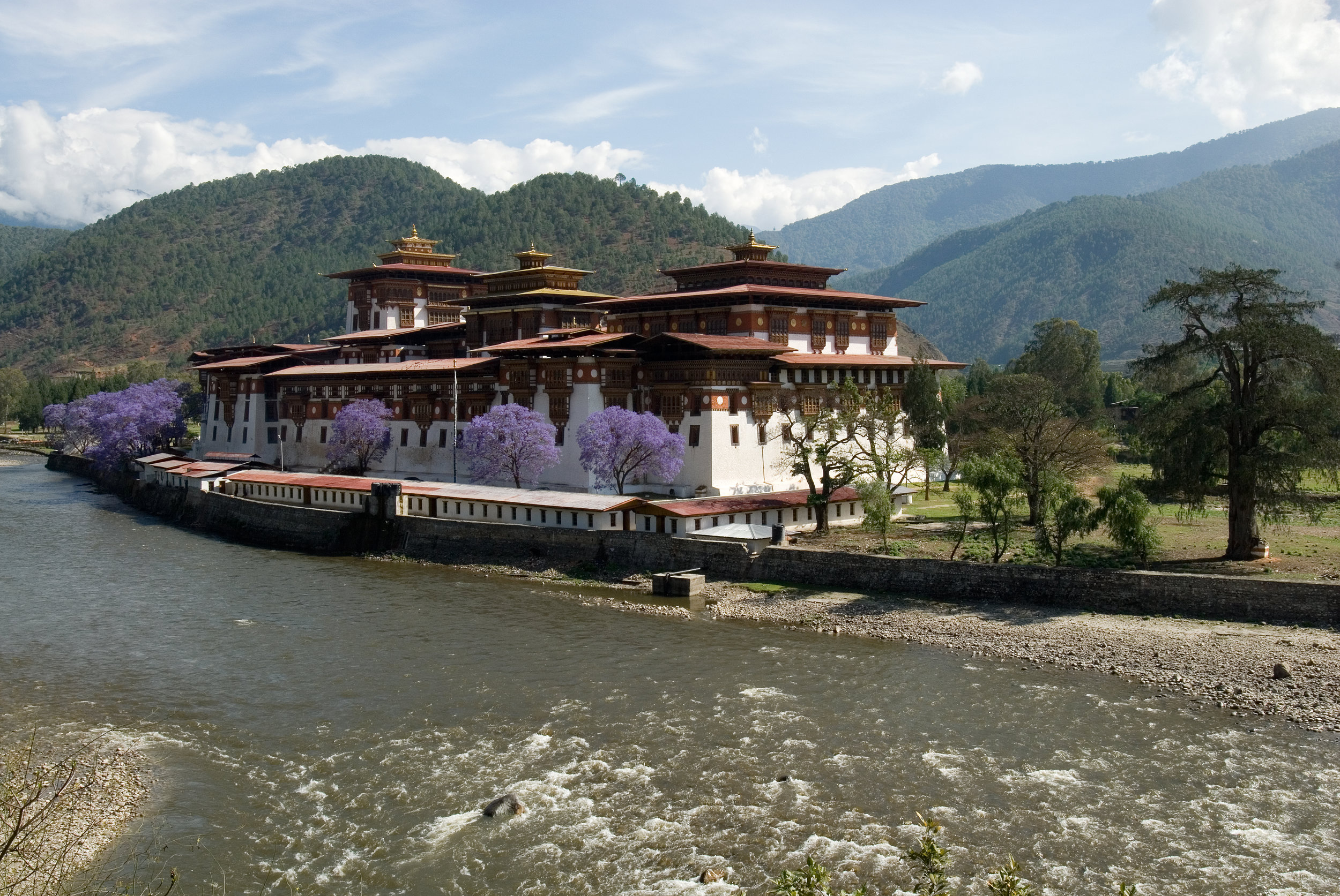 Punakha Dzong (1).jpg