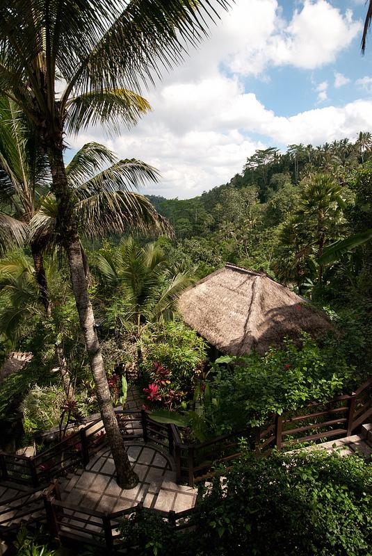 View Ubud Hanging Gardens bali hotel