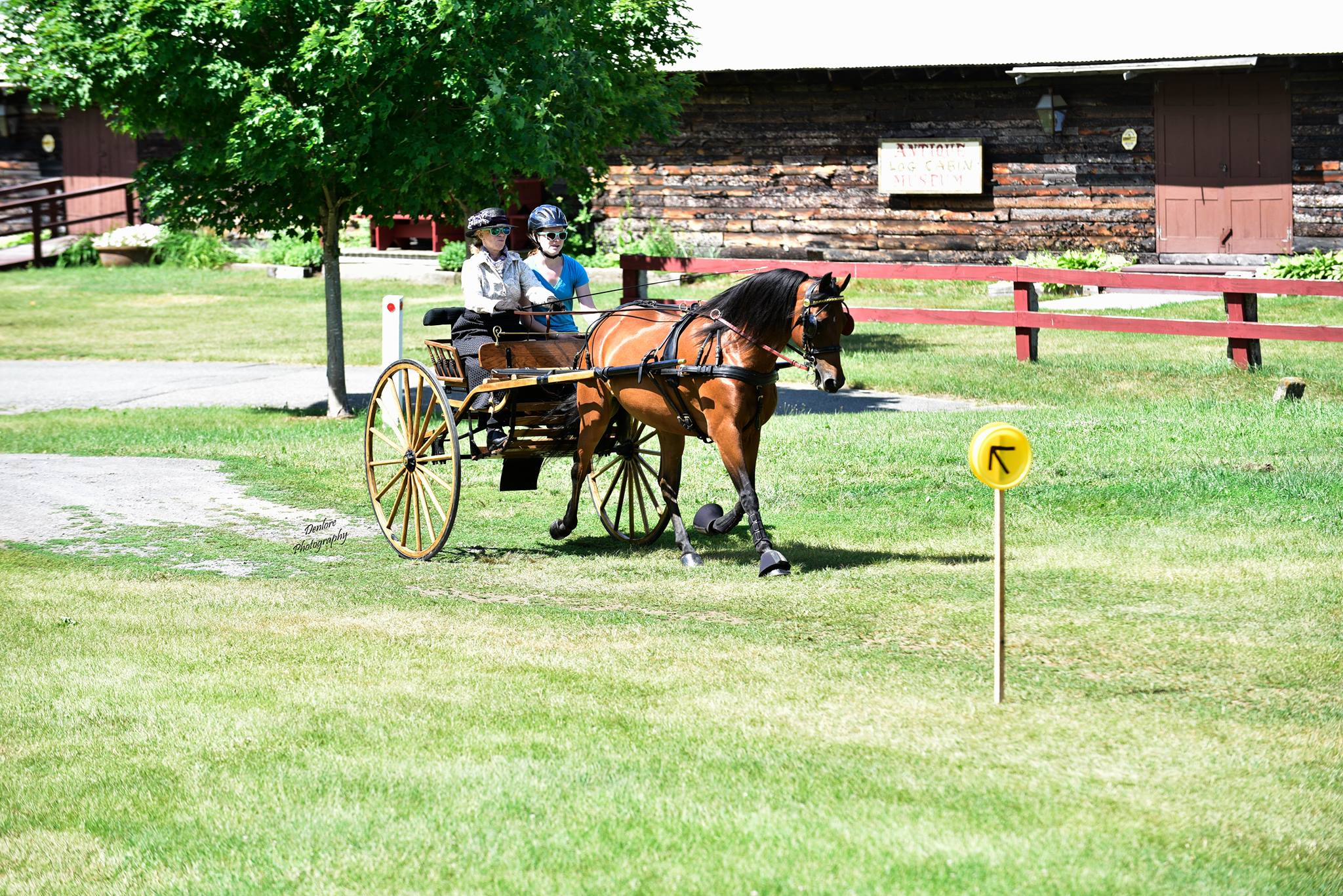 Equinox Shangrila with Cindy & Katie Mayer compete in the continuous drive at Heritage Days