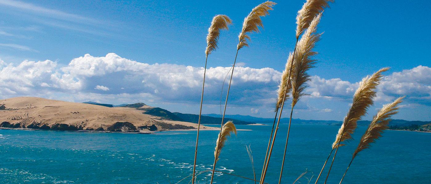 Hokianga Harbour | Omapere | Opononi | Sand Dunes