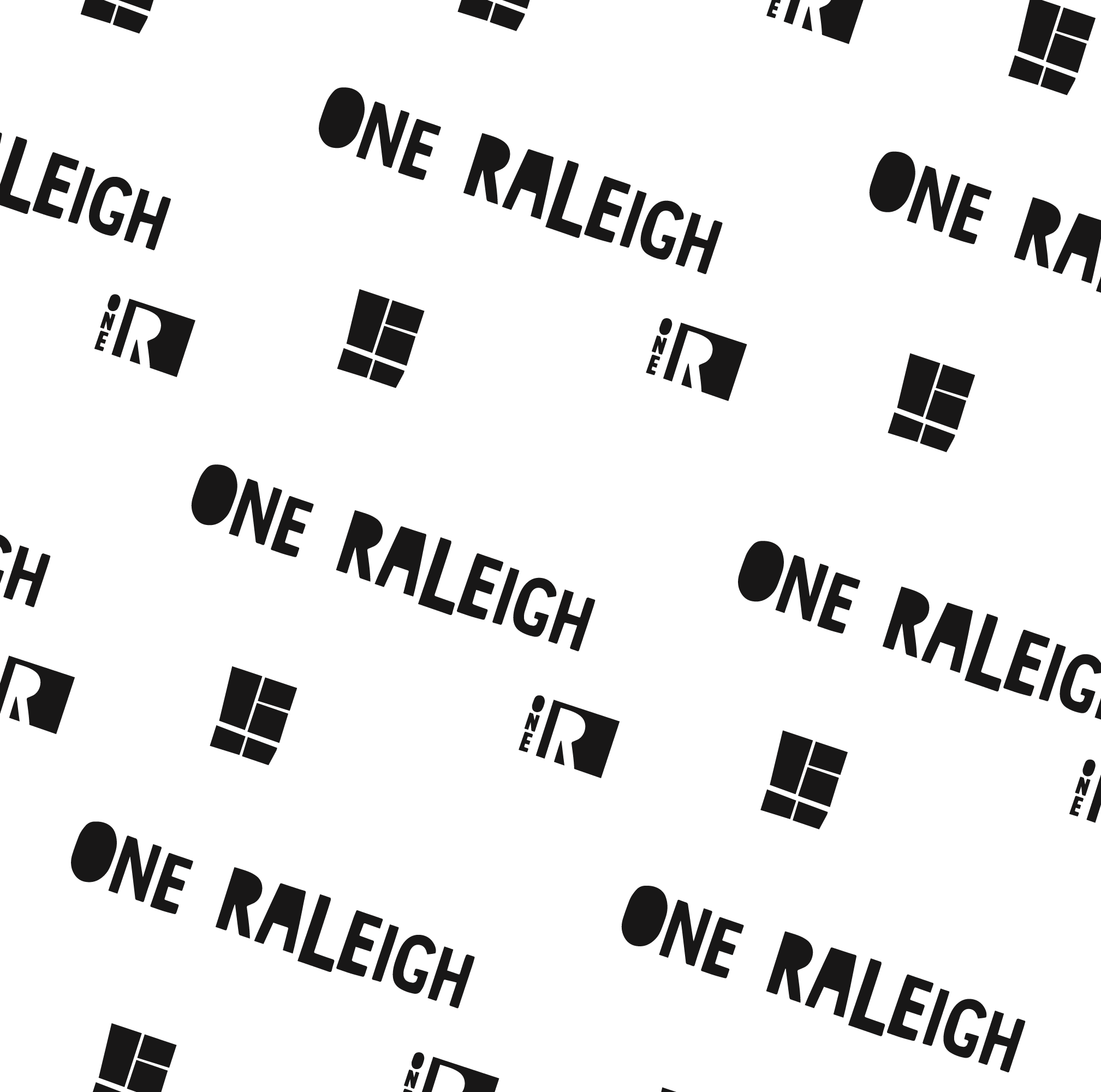 one-raleigh-pattern.png