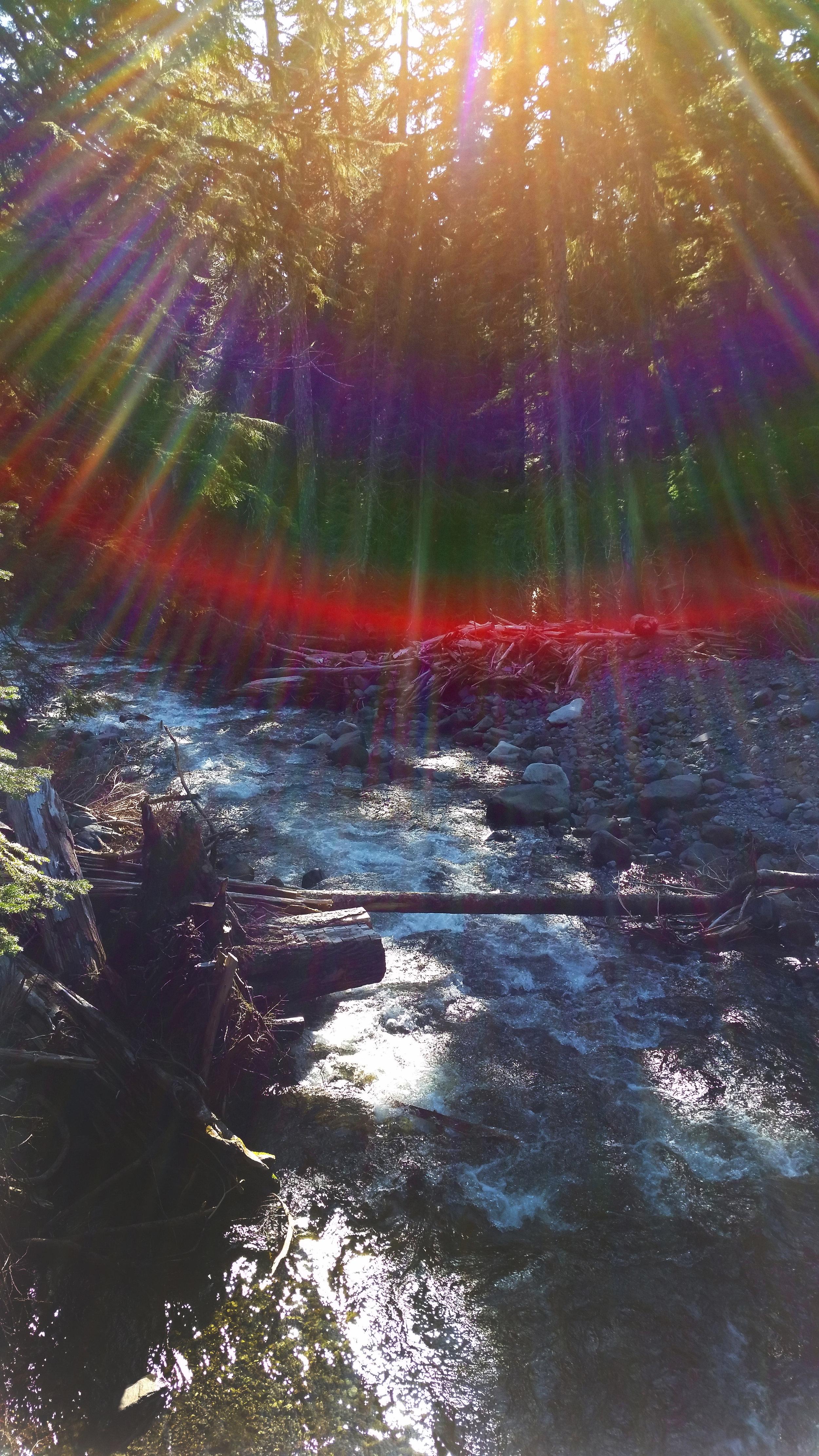 Mt Rainier Rainbow, 2015.jpg