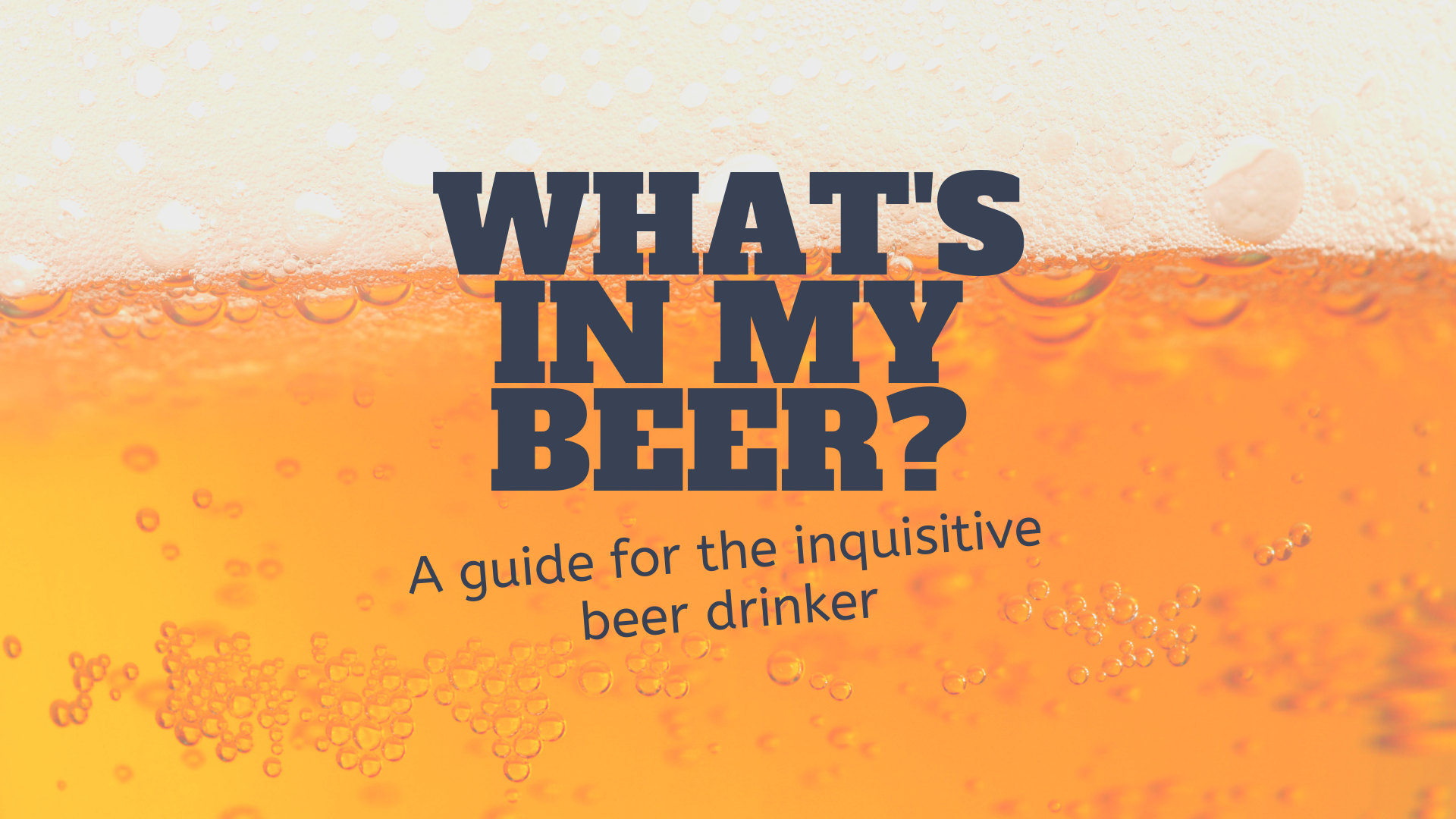 what's in my beer (6).png