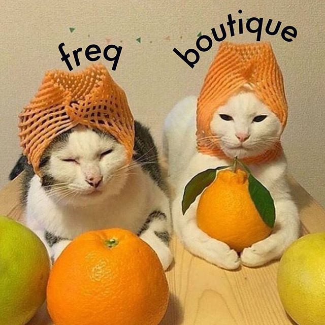 grab a fellow freq for tonight's FREQ BOUTIQUE - @nastynachos & @wmdevices monthly modular synth meetup + performances! 8pm 🍊