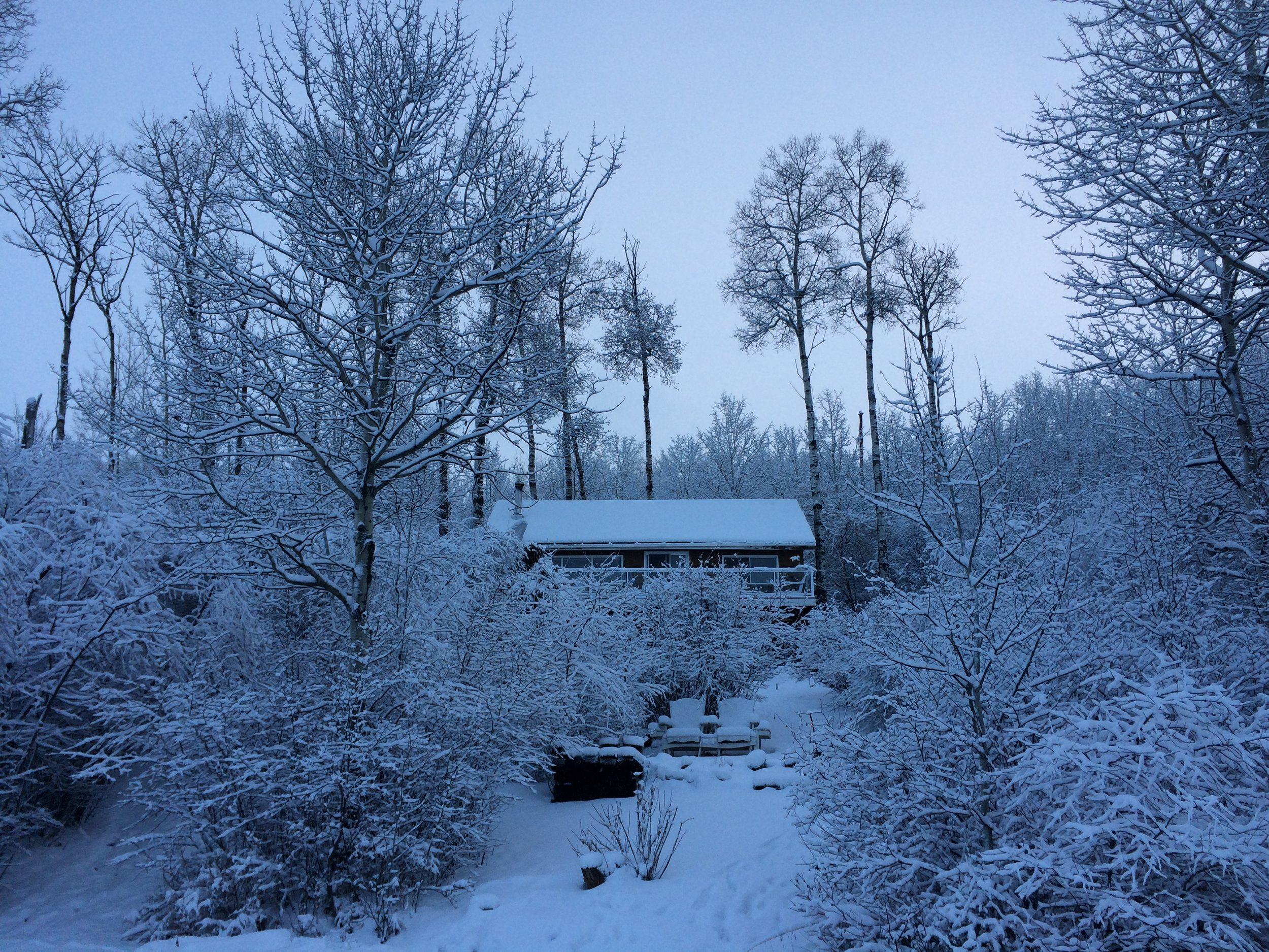 My family's cabin (photo by:  @thelotuspage )