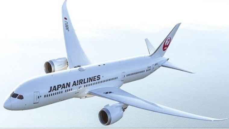 12freepressjournal_import_2018_11_japan-airlines.jpg
