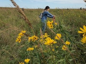 Neil Smith National Wildlife Refuge - A prairie refuge with a 700-acre bison enclosure