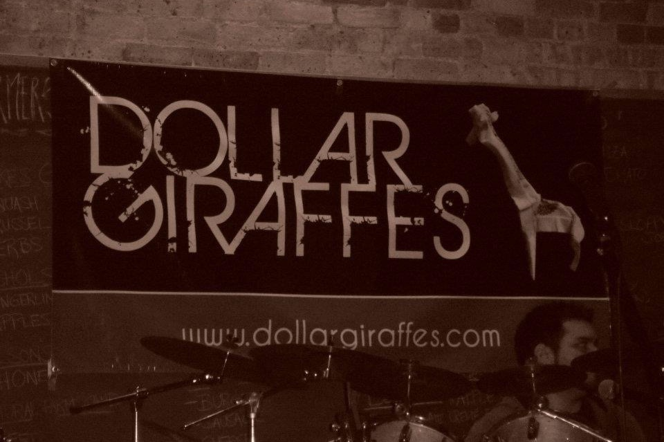 Dollar Giraffes -
