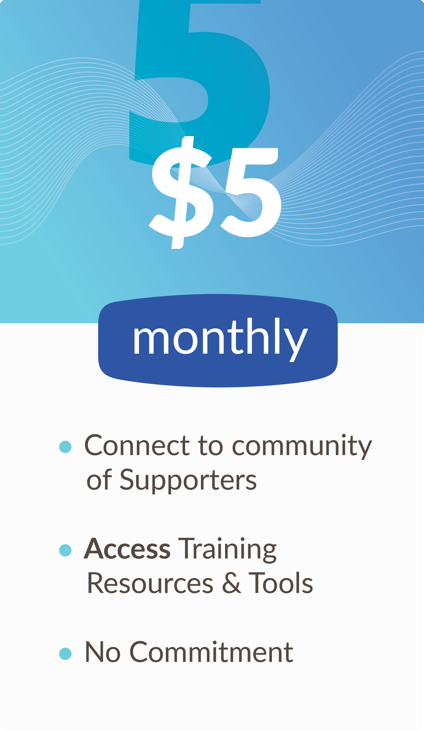 $5 monthly subscription options for digital mentorship, funding and business training.