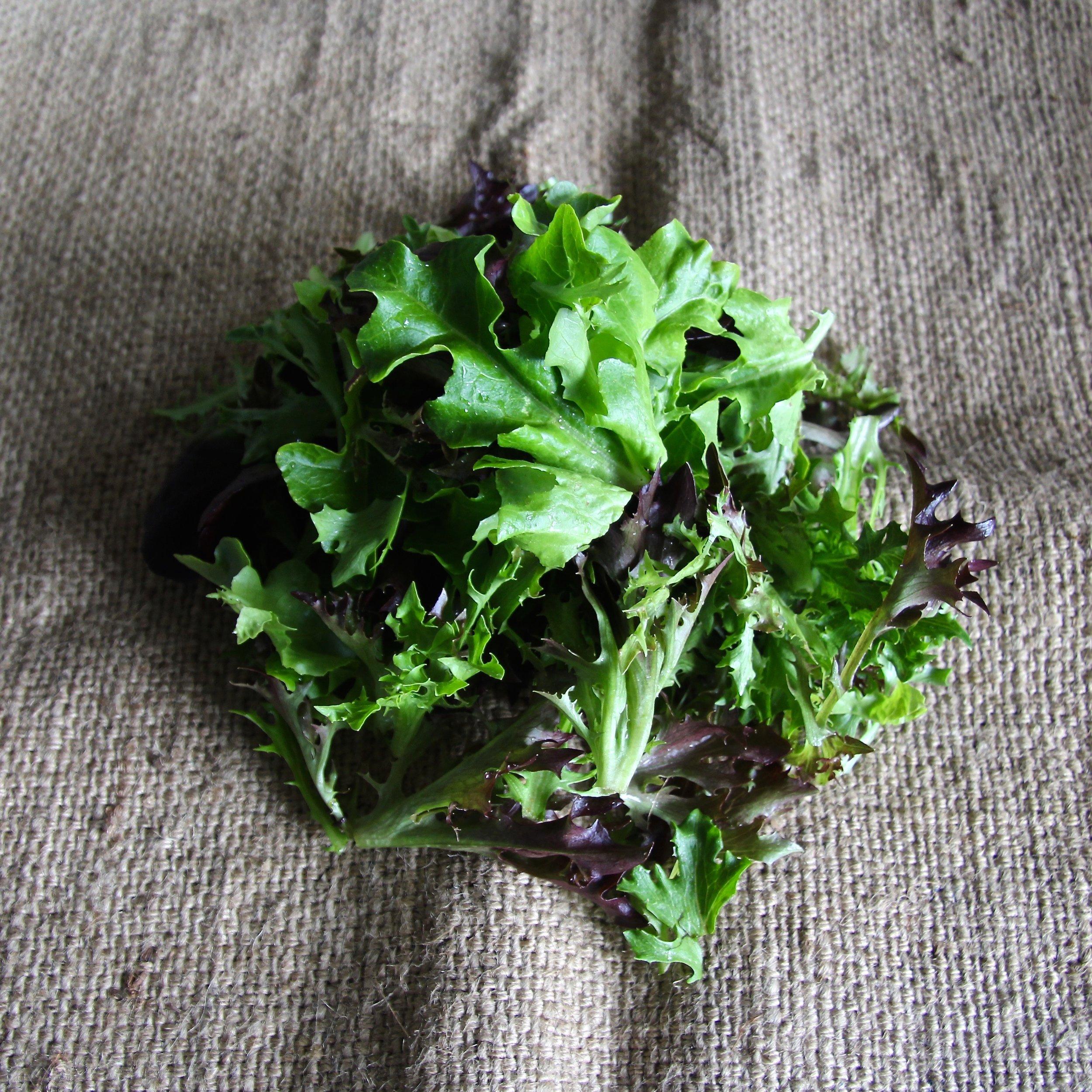 Salad Mix copy.jpg