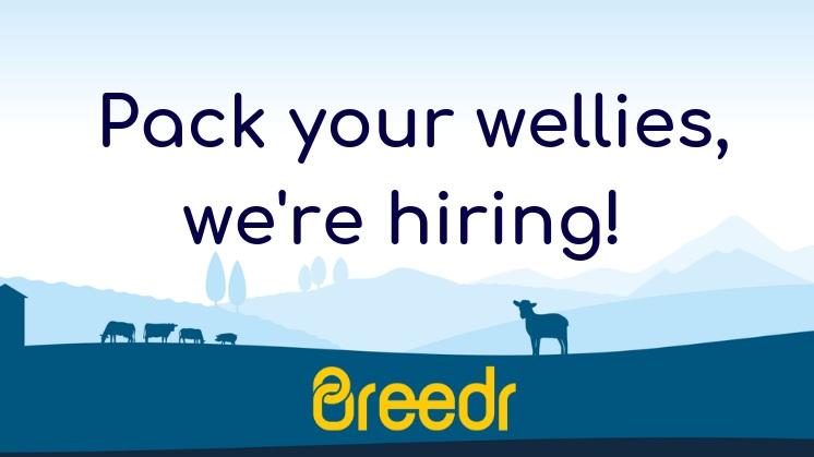 Pack+your+wellies%2C+we%27re+hiring%21.jpg