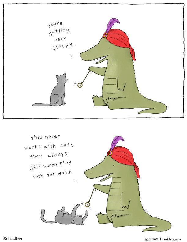 Comic Credit:  Liz Climo