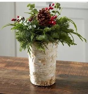 eucalyptus vase holidays LaRolf