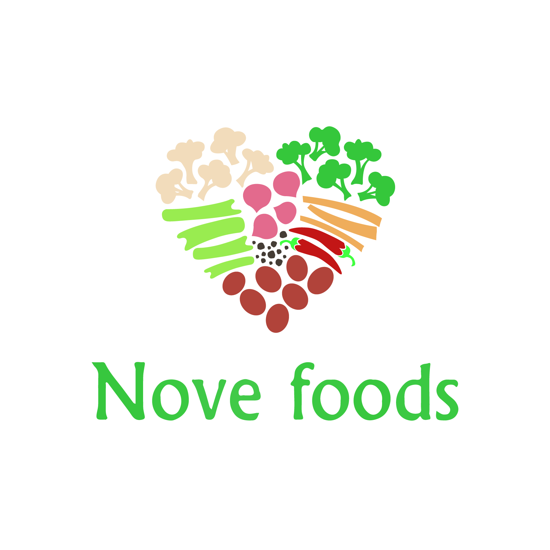 Logo Nove foods.jpg
