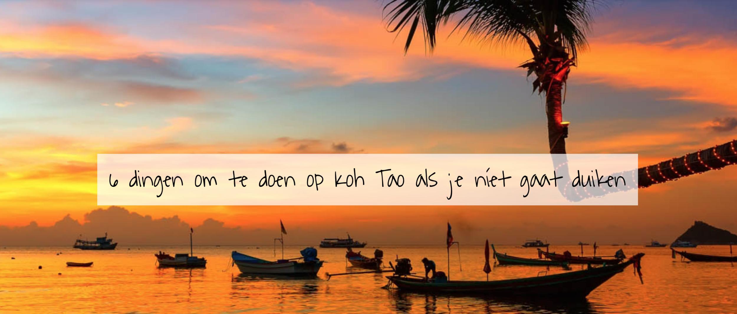 6 dingen om te doen op koh tao als je niet gaat duiken - Het Thaise eilandje Koh Tao staat bekend als duikparadijs – nergens ter wereld zijn zo veel duikscholen op zo weinig vierkante kilometer. Toch is er ook voor de mensen die géén behoefte hebben aan duiken genoeg te beleven. Zes leuke to-do's op het eiland.