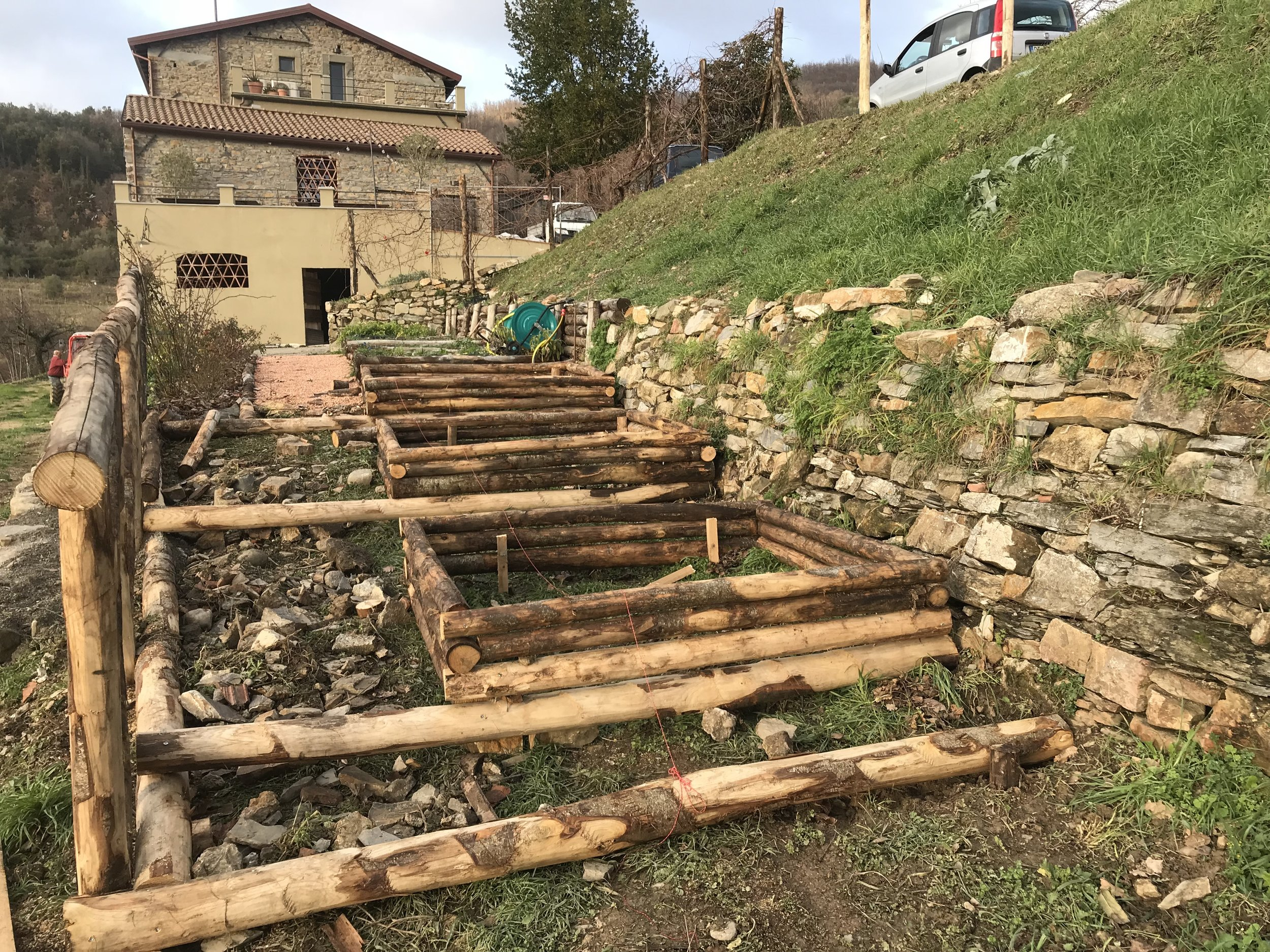 Building the Fortress' vegetable garden's troughs out of tree trunks…