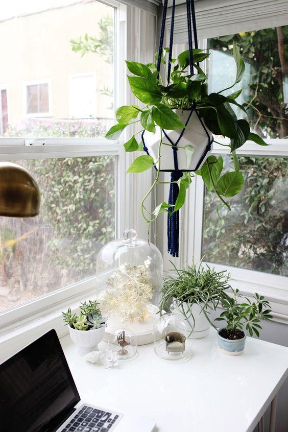 Office Eco Habits