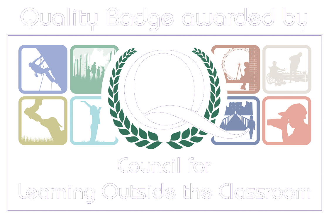 Quality Badge.png