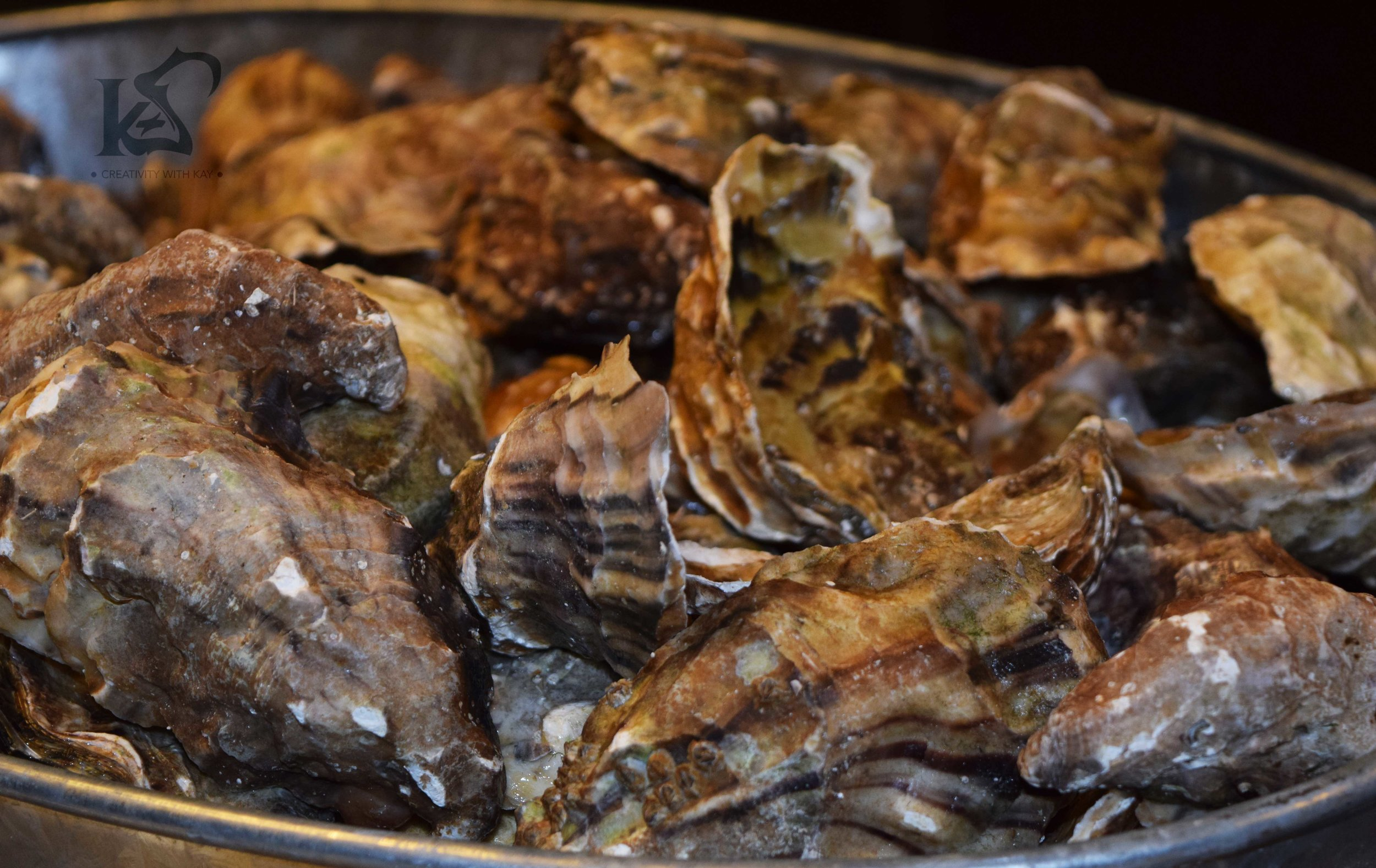 Fresh Oysters as Appetizers