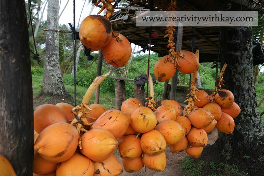 qatar-travel-blogger-khansa-coconut-water-street-srilanka.jpg