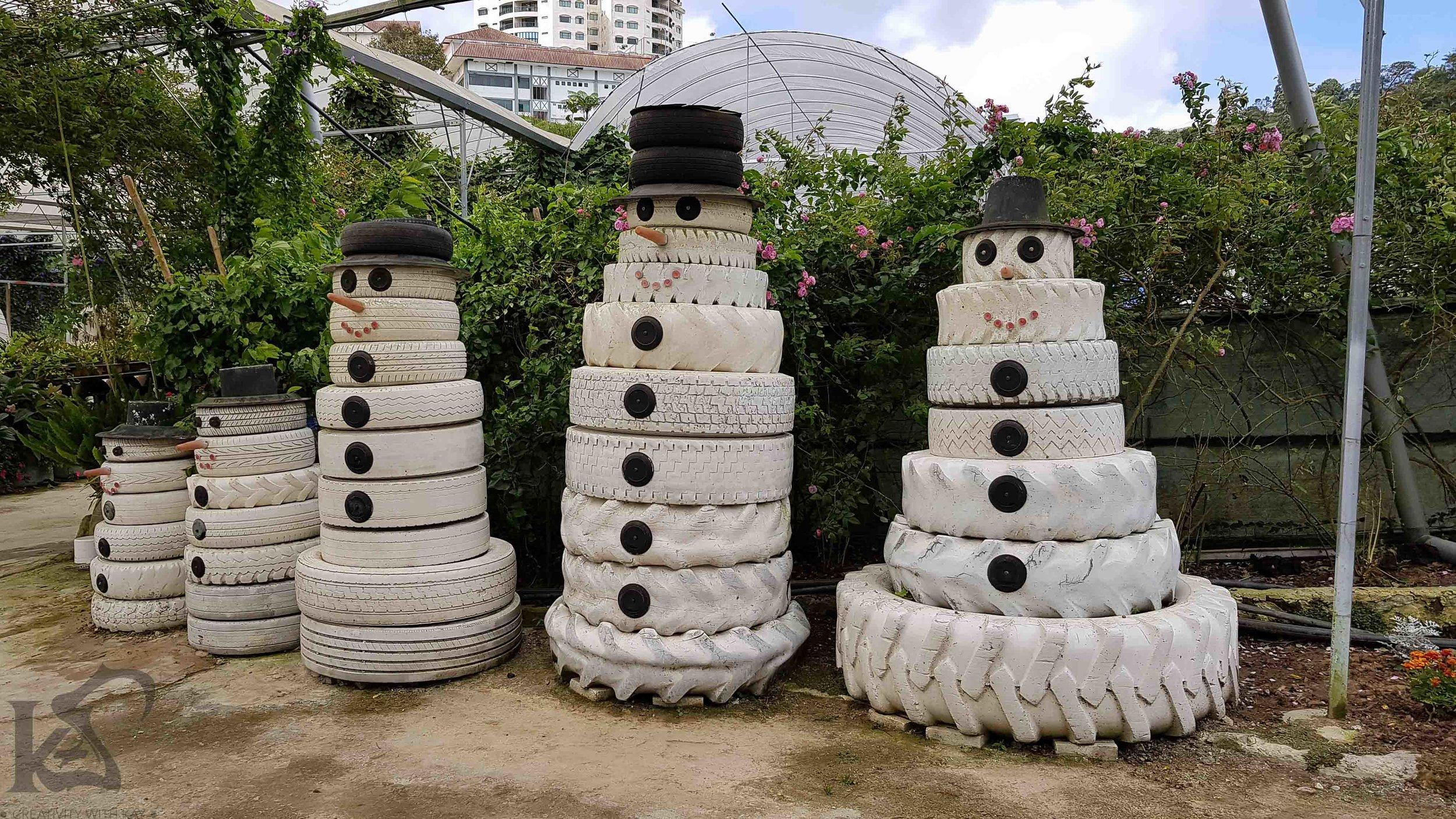 cameronhighlands-malaysia-qatarblogger-junglewalk-112141.jpg