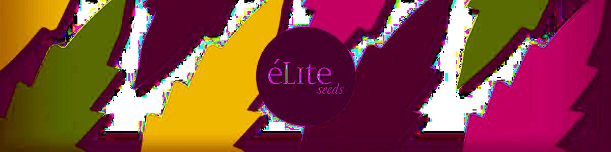 Elite Seeds.png