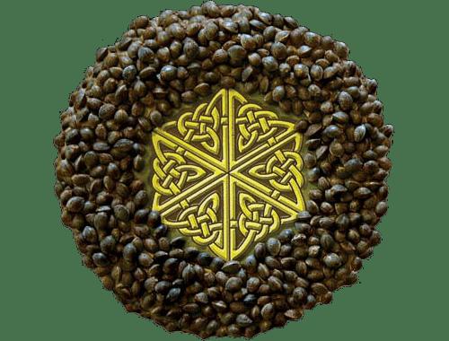 mandala-seeds_2.png