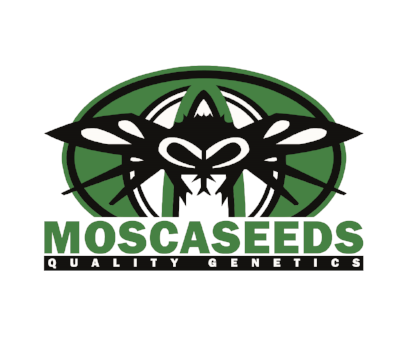 Mosca Seeds.png