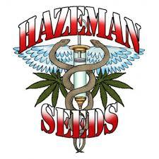 HazeMan Seeds.jpg
