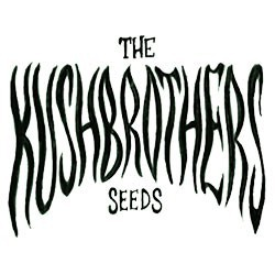 the-kush-brothers-seeds.jpg