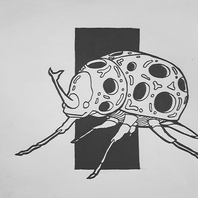 Scrabeetle 🕷 . . . . . . #Scrapdog #illustration #black #white #grey #paper #sketchbook #sketch #streetart #streetstyle #artwork #beetle #paint #instaart #gallery #home #cteative #sht #pen #summer #bb