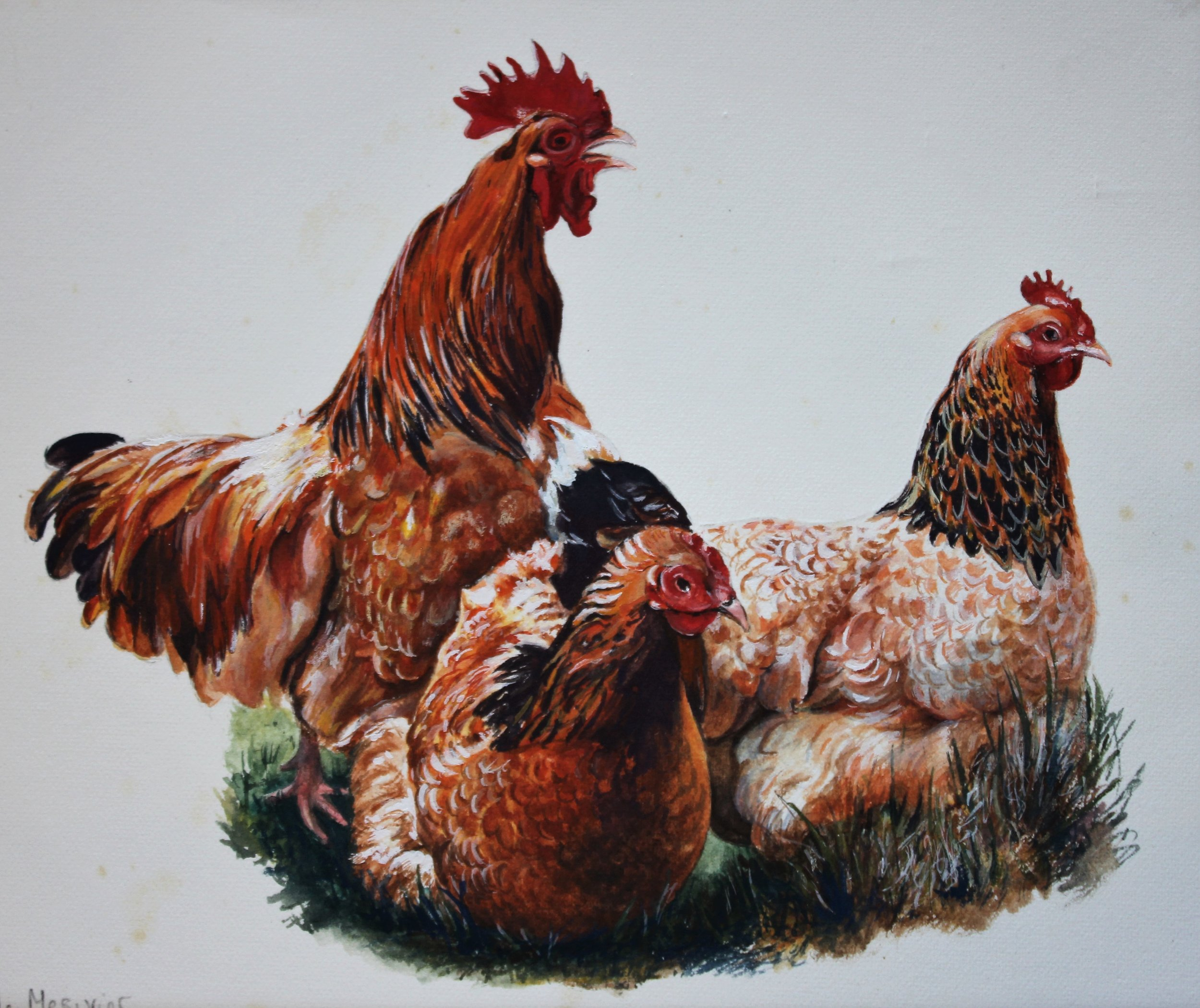 Chicken Trio