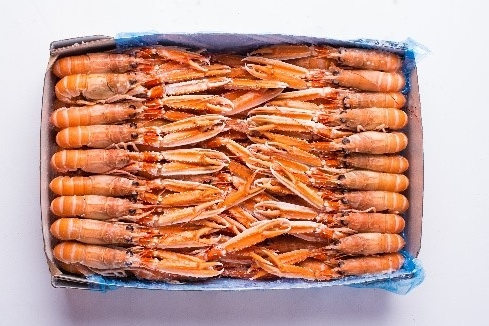 WHOLE LANGOUSTINE    Net Weight:  3kg   Format:  Frozen   Size Grade:  10-15 | 16-20 | 21-30 | 31-40 | 41-50 | 5-9   Notes:  Packed in cartons. Graded and sized by individual langoustine amount per Kilo