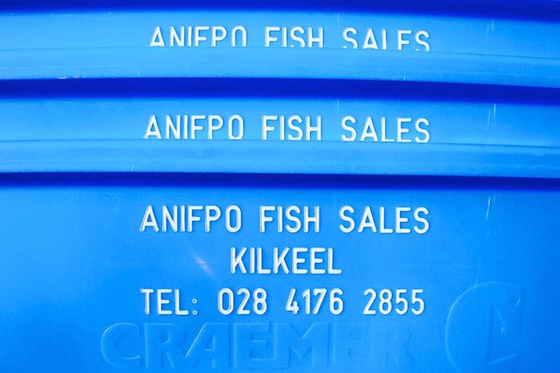 ANIFPO Fish Box.jpg