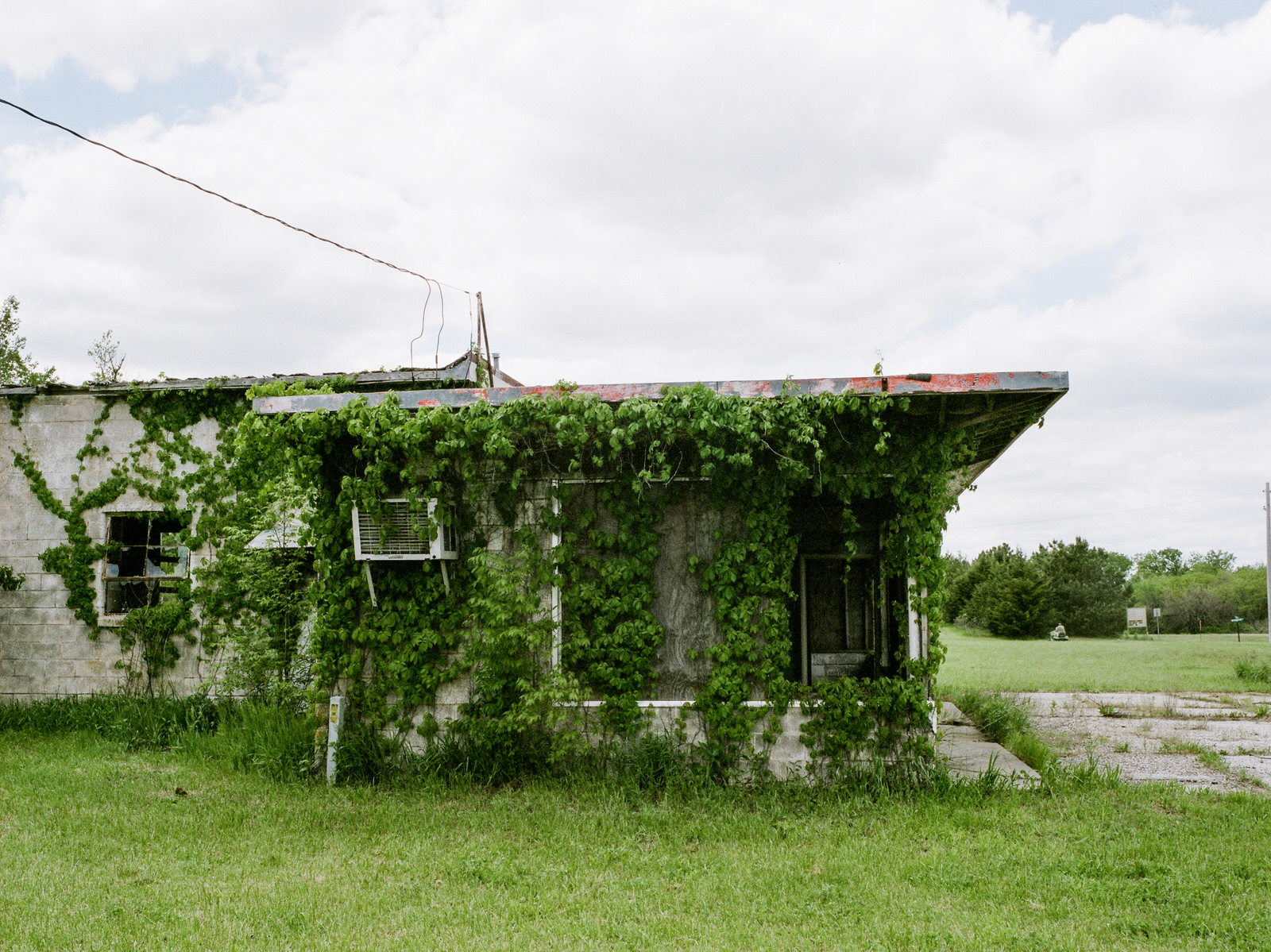 The overgrown vines on the abandon buildings were rich with flavor and feels.