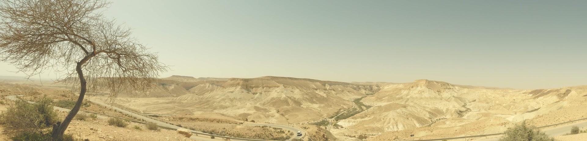 Negev Desert, Israel. [Image: Ruth Wilson, 2019]