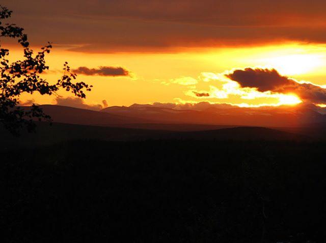 Sunset by the border. Pictures of Lofoten coming soon. #riksgränsen #fjäll