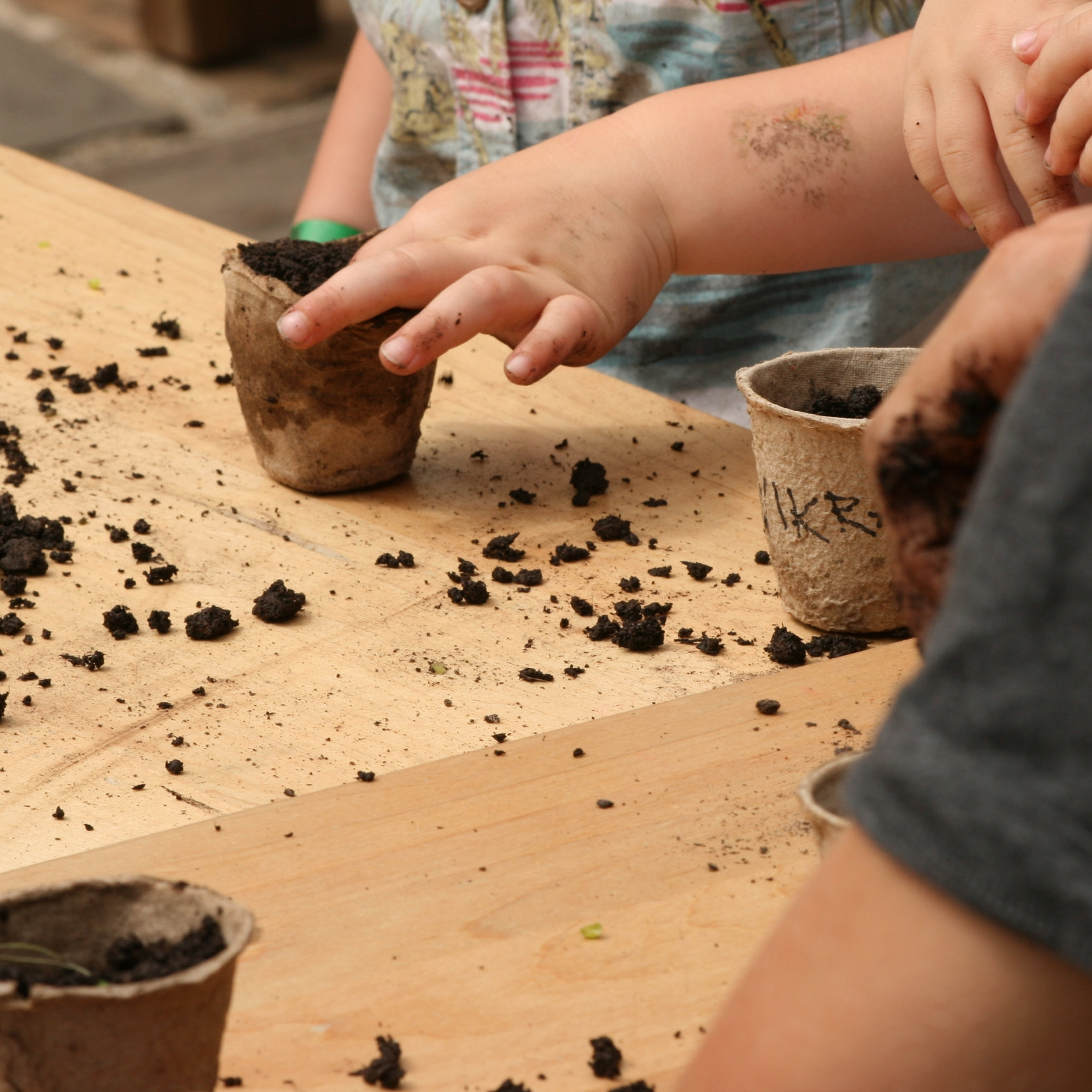 Sowing 2.jpg