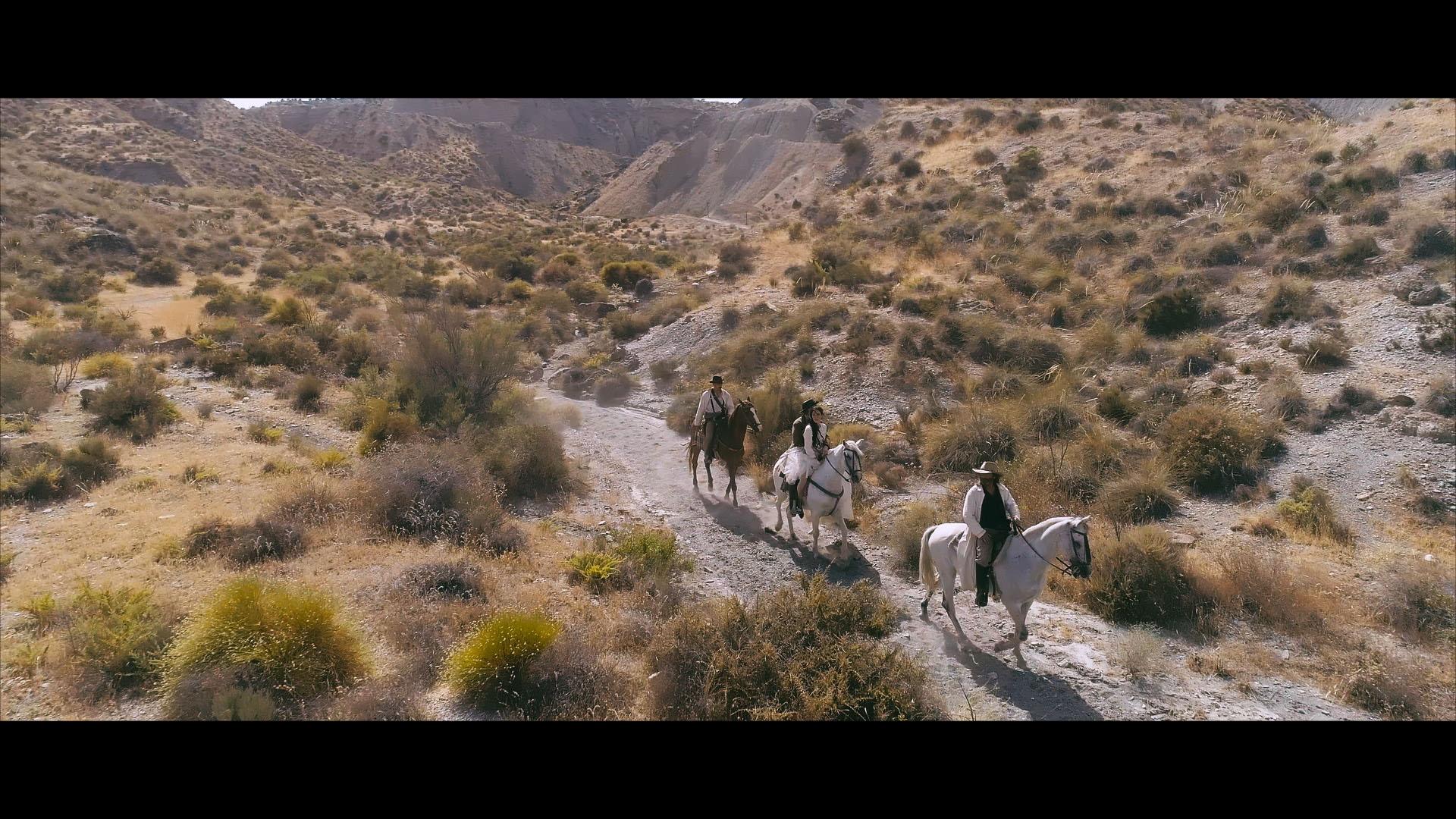 Horses-03.jpg